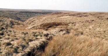 This Day In History: The Moors Murderes Begin Their Killing Spree (1963)