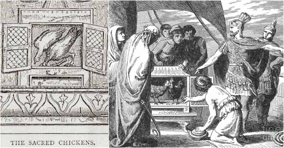 The Sacred Chickens that Shaped Roman Decision-Making