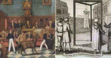 Animals in the Middle Ages Faced Criminal Charges in These Bizarre Situations