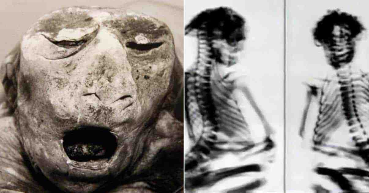 The Truth Behind the Disturbing Mystery of the San Pedro Mountains Mummy