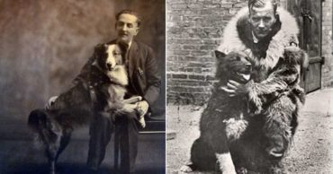 10 Dogs Who Changed the Course of History for Man and Beast Alike