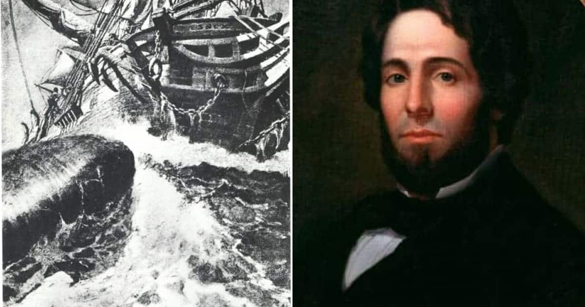 This Disastrous Shipwreck Forced Survivors into Cannibalism and Inspired the Tale of Moby Dick